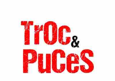 Troc puces